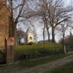 Nowe Miasto. Resztki dawnych nasadzeń na wale obronnym otaczającym gotycki kościół.