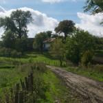 Boratycze. Widok zabudowy podworskiej oraz resztówka ogrodu (okazała topola czarna o obwodzie ponad 800 cm)