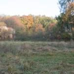 Chłopy (ukr. Переможне). ruiny pałacu Lanckorońskich, który był zachowany w dość dobrym stanie jeszcze na pocz. obecnego stulecia. Z boku okazały modrzew oraz klon polny.