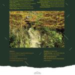 Katalog 14