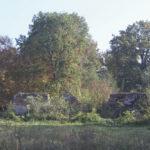 Wróblaczyn (ukr.Вороблячин). Ruiny dworu na tle parkowo zagospodarowanego lasu.