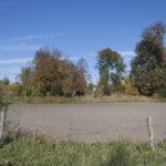 Zaborze (ukr. Забір'я). Widok ogólny na dawny teren podworski z zachowanymi pojedynczymi starymi drzewami.
