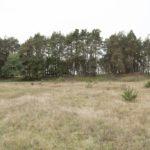 Biesiady (ukr. Бесіди). Fortyfikacje ziemne nieistniejącego klasztoru Bazylianów, widok od strony osuszonych bagien.