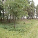 Biesiady (ukr. Бесіди). Fortyfikacje ziemne nieistniejącego klasztoru Bazylianów, widok od strony wjazdu.