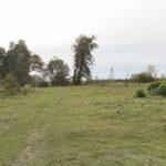 Derewnia (ukr. Деревня). Pozostałości dawnego ogrodu zachowane w postaci skupiska drzew lipy i dębu.