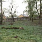 Tartaków (ukr. Тартаків). Fragment ogrodu z murem granicznym. Nasadzenia robinii akacjowej z 2 poł. w. XX.