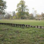 Tartaków (ukr. Тартаків). Boisko w centrum dawnego ogrodu. W tle samotny jesion.
