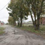 Turynka (ukr. Туринка). Szpaler lipowy na terenie dawnego założenia dworskiego, a obecnie zdewastowanych budynków pokołchozowych.