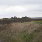 Uśmierz. Wzniesienie z pozostałościami dawnego założenia dworsko-ogrodowego, widok od drogi dojazdowej od strony Waręża.